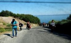 جهود الامم المتحدة لاحتواء نصف مليون مهاجر سوري قد فشلت